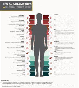 Bilan nutrition santé 24 paramètres