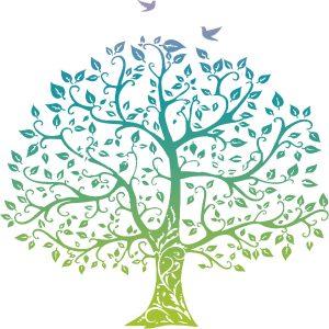 naturopathie holistique