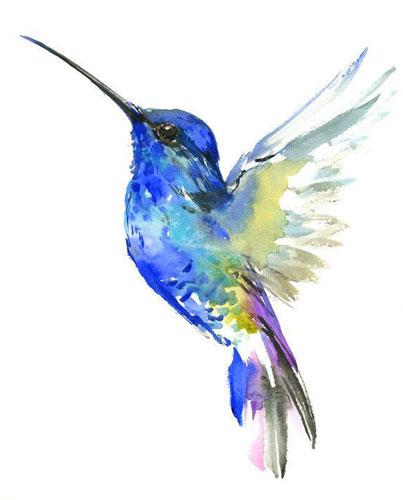 oiseaudeparadis2